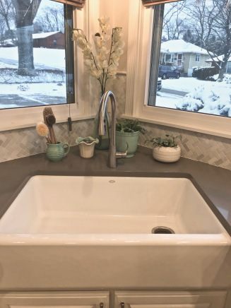 We picked this Kohler cast iron farmhouse sink for our main dish washing sink